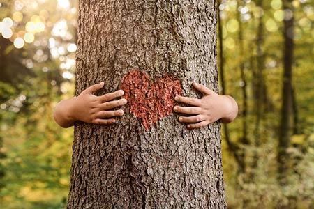 Kind umarmt einen Baum