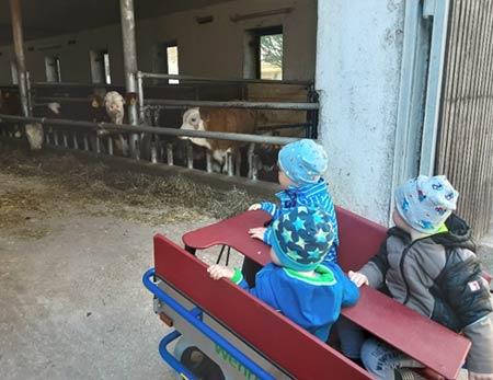 Krippengruppe beim Bauernhof